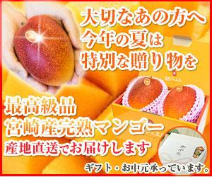 【YDNGDN】300-250
