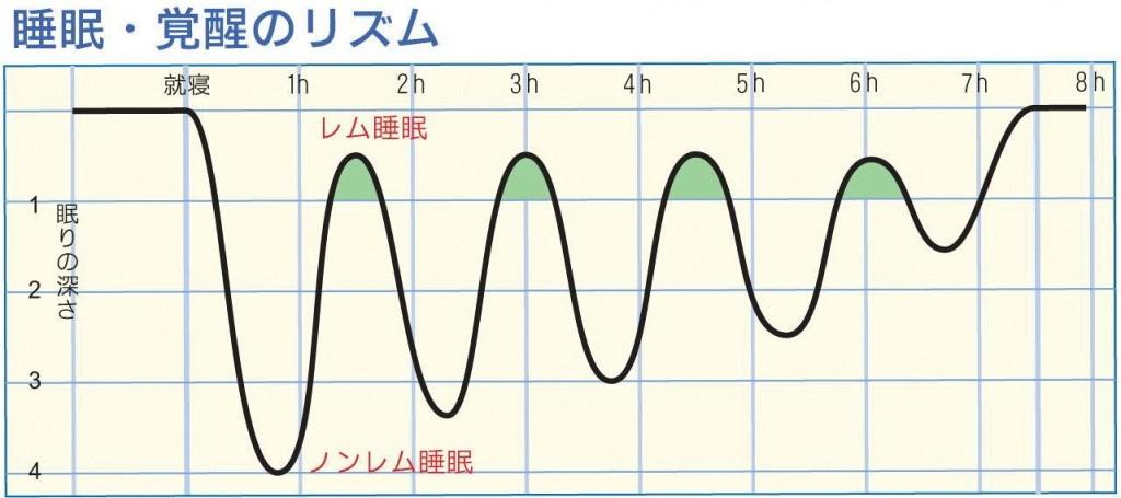 睡眠・覚醒のリズムのグラフ
